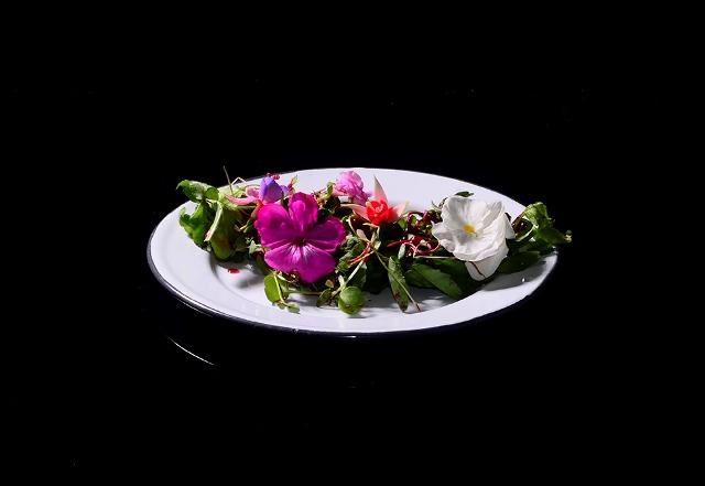 xolo-bar-roma-foodie (4)