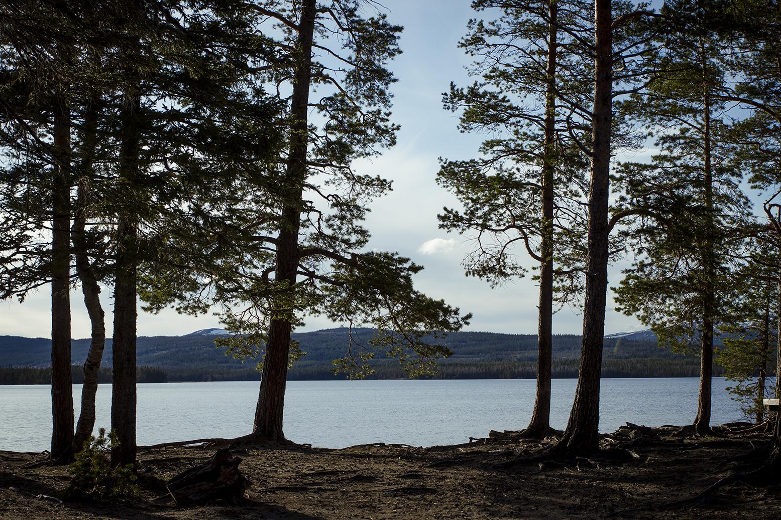 Ottsjö sandstrand ridvad www.traningsgladje.se