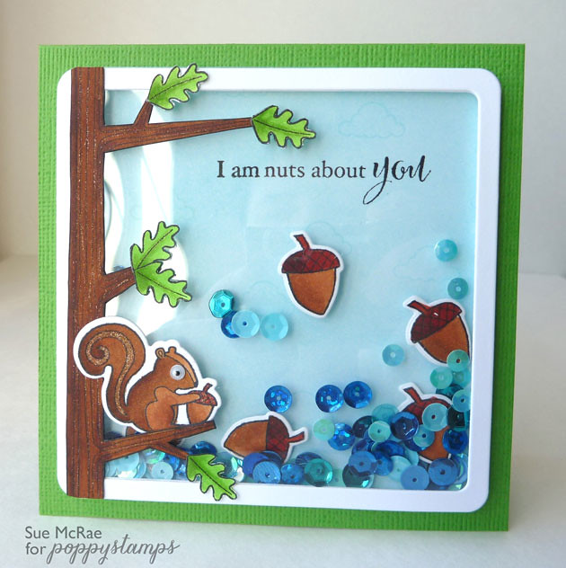 Squirrel Shaker Card