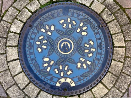 Komagane Nagano, manhole cover (長野県駒ケ根市のマンホール)
