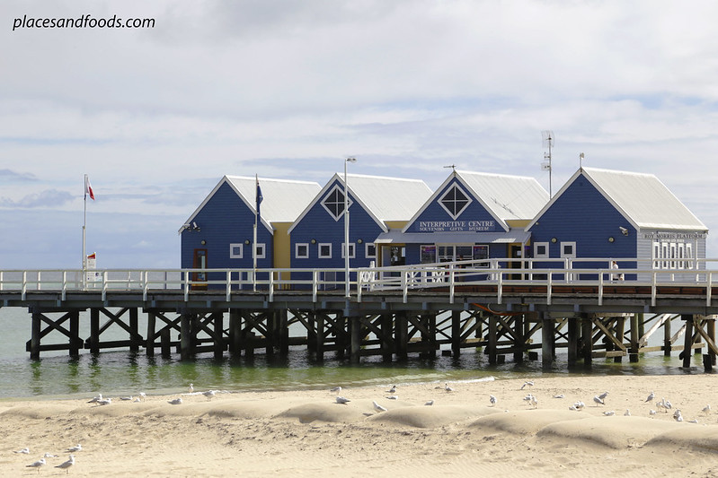 busselton jetty close up