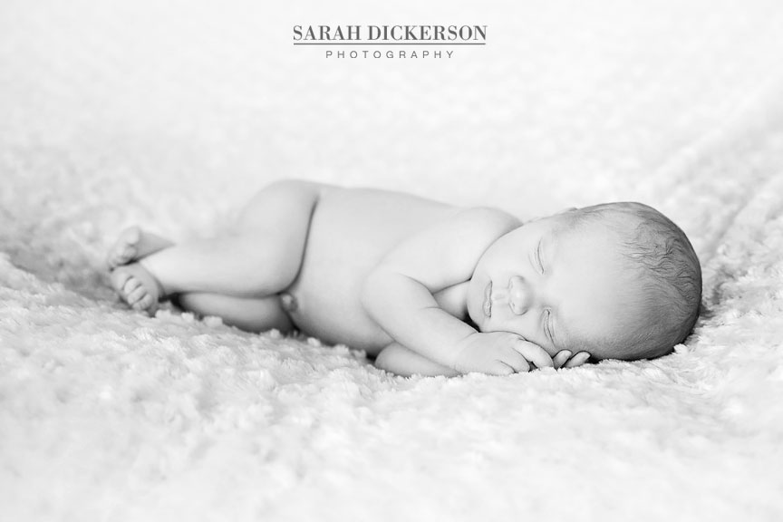 Kansas City newborn portrait session