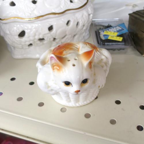 cat shaker (2)