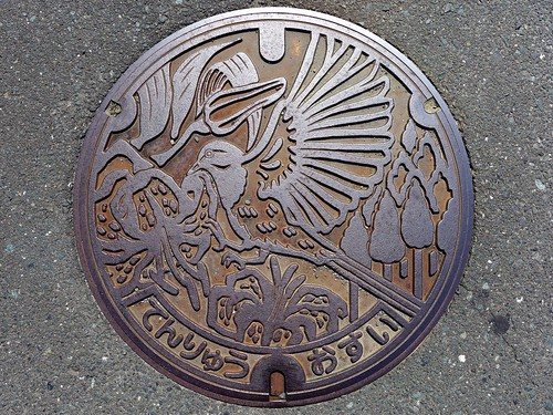 Tenryu Shizuoka, manhole cover (静岡県天竜市のマンホール)