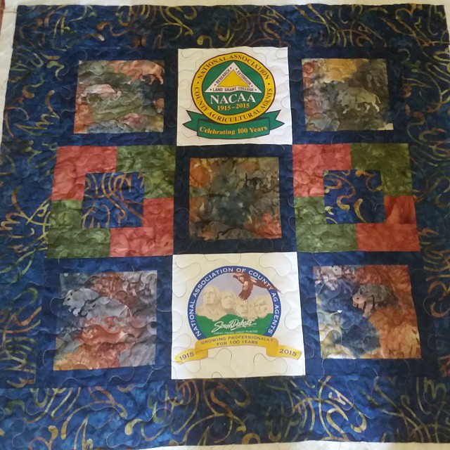 Leftover blocks make a great mini quilt! Pieced last night, quilted today. #nacaa