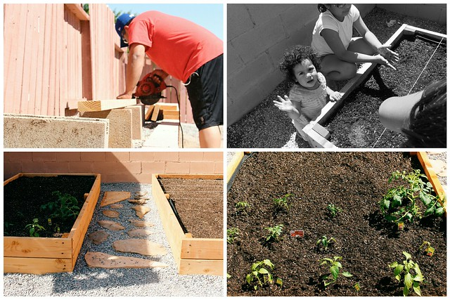 gardening- raised, garden beds
