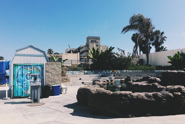 The SEA Lab