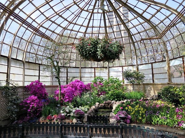 LincolnParkConservatory06