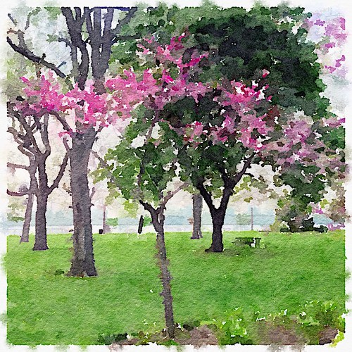 NaBloPoMo May 16, 2015 - Filter Me This
