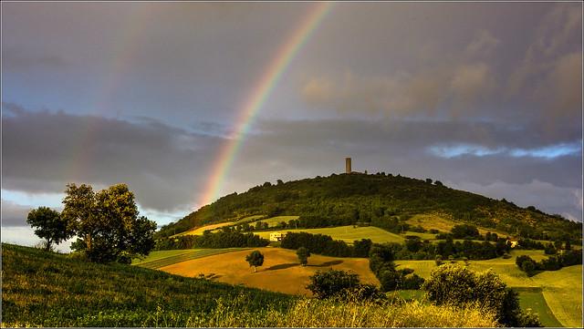 Pitino e l'arcobaleno