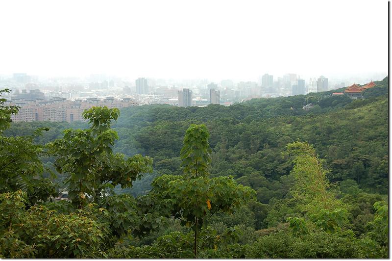 新路坑山(龜崙山)俯瞰桃園市區 1