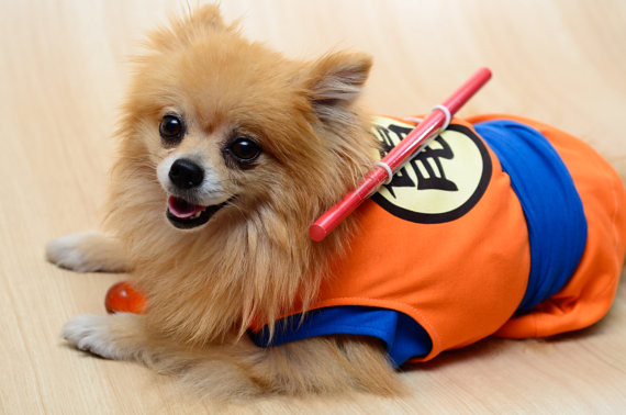 Dragon Ball Goku Dog Cosplay