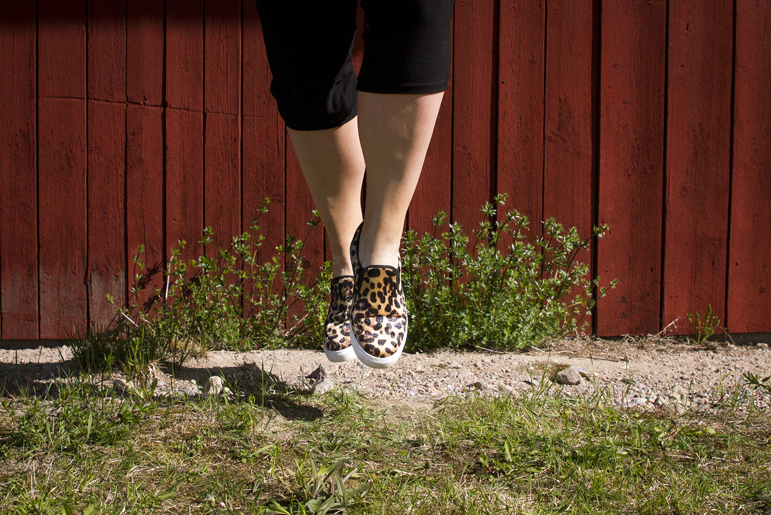 Leopard sneakers www.traningsgladje.se