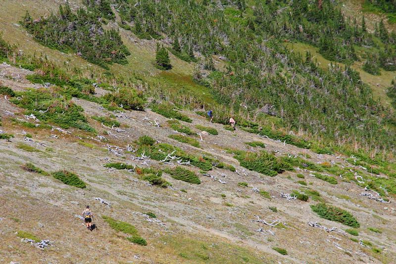 IMG_8496 Ranger-Led Firebrand Pass Hike