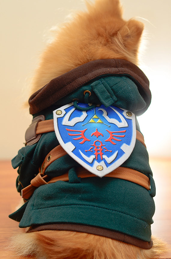 Legend of Zelda Link Dog Cosplay