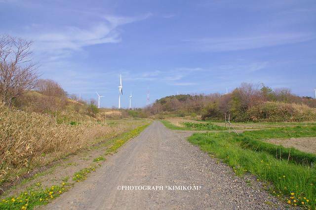 風車の見える丘1