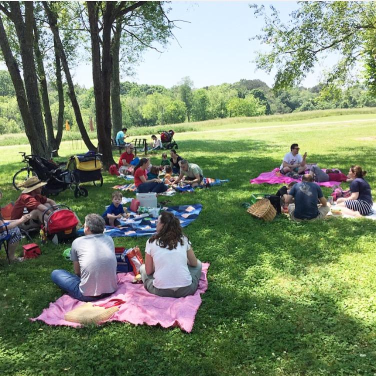 Triangle MQG picnic