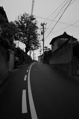niigata monochrome 58