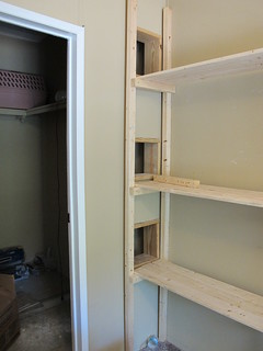 The cat shelves (in progress)