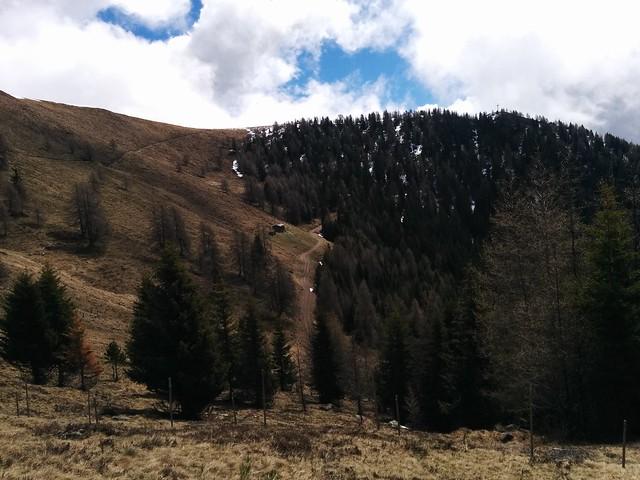 Blick auf den Gipfel des Hörneggele mit dem Gipfelkreuz