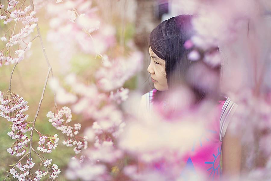 .Spring blossom.