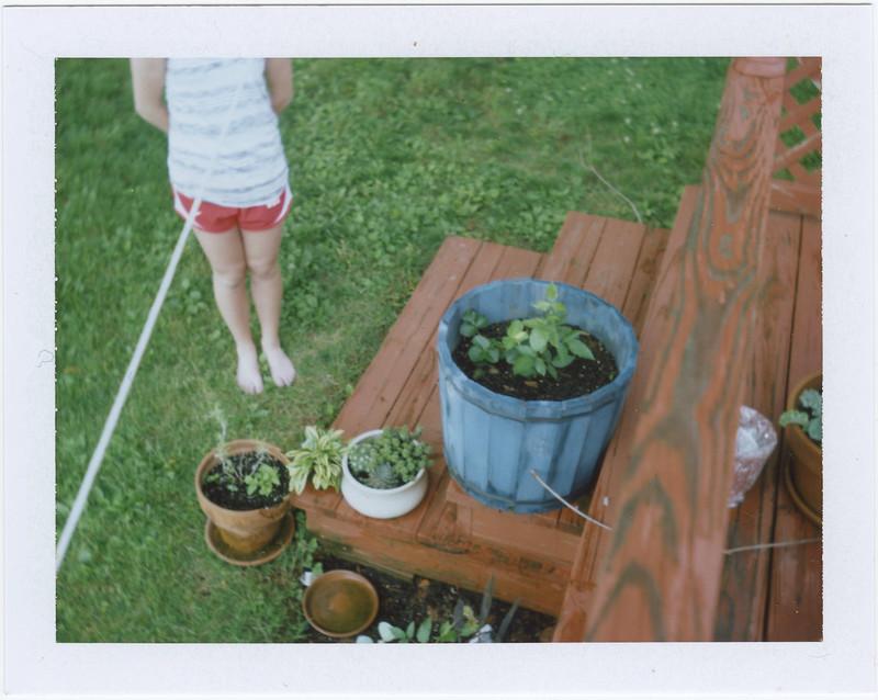 2015.05.26_ polaroid summer _lemon