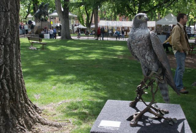 Peregrine Falcon Statue