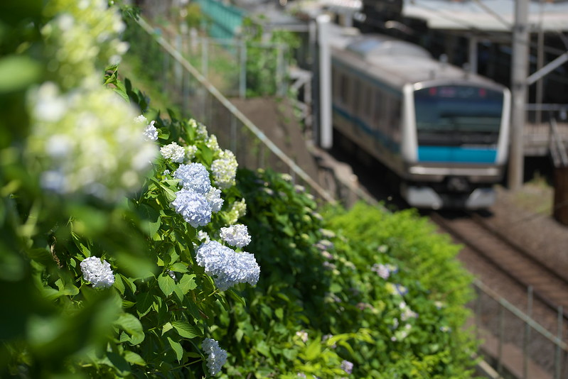 Tokyo Train Story 京浜東北線 2015年5月30日