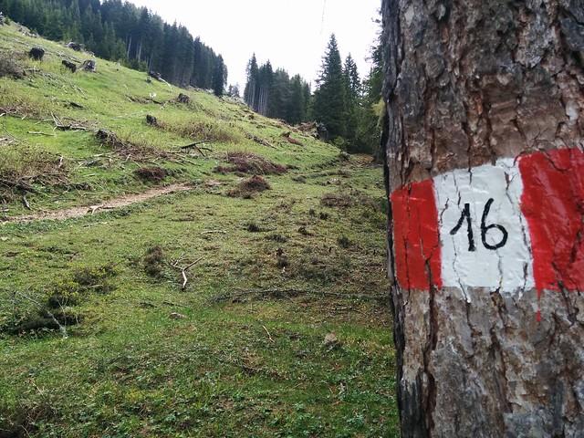 Wegmarkierung Nr. 16 Aufstieg Sarlsattel