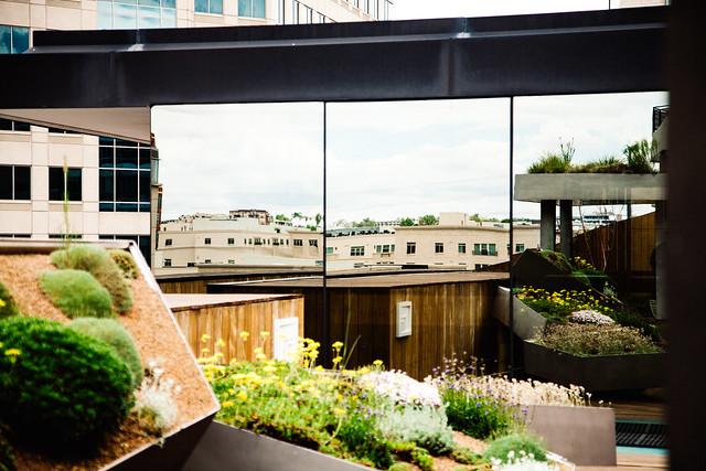 MCA rooftop