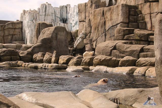 Tierpark Hagenbeck 21.05.2016  0108