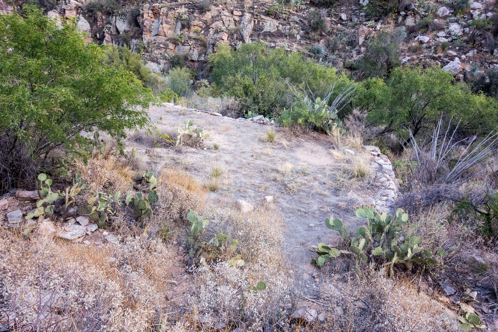 1505 Old Platform off the Pontatoc Canyon Trail