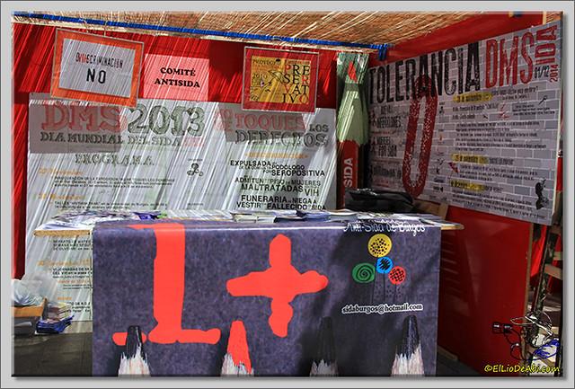 Feria de Asociaciones en Briviesca (6)