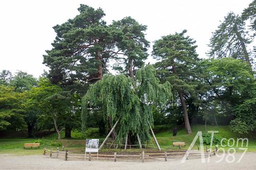 Hirosaki Park - Ninomaru