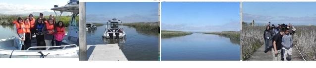 alviso boat tour bitmap