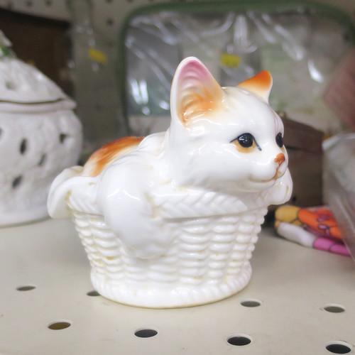 cat shaker