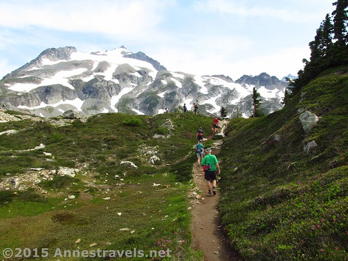 Hiking on of the less-scenic parts of the trail along Sahale Arm, North Cascades National Park, Washington