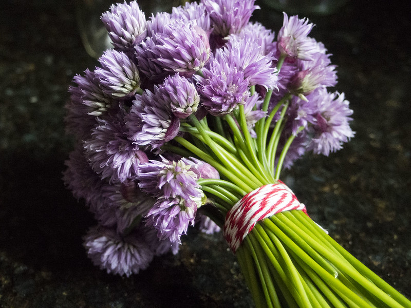 And still more chives