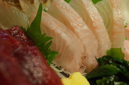 鷹羽鯛(タカノハダイ) 魚えん(Gyoen) 10