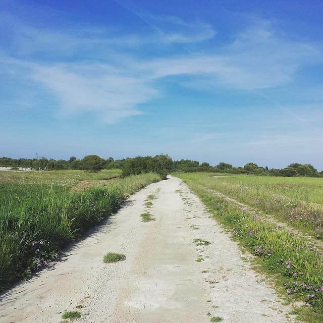 Viaggio a piedi