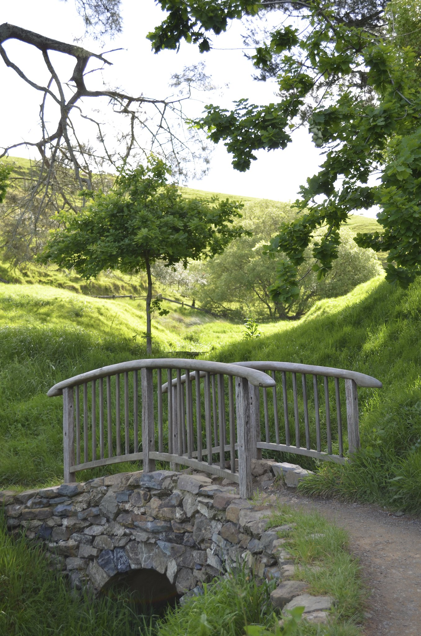 Hobbiton - bridge