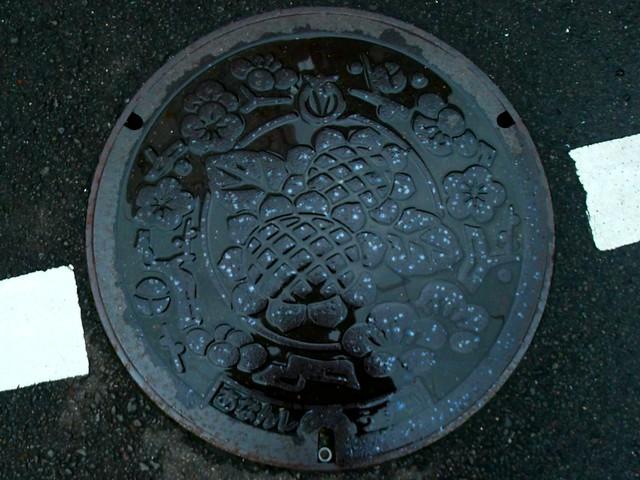 Anan Tokushima, manhole cover 3 (徳島県阿南市のマンホール3)