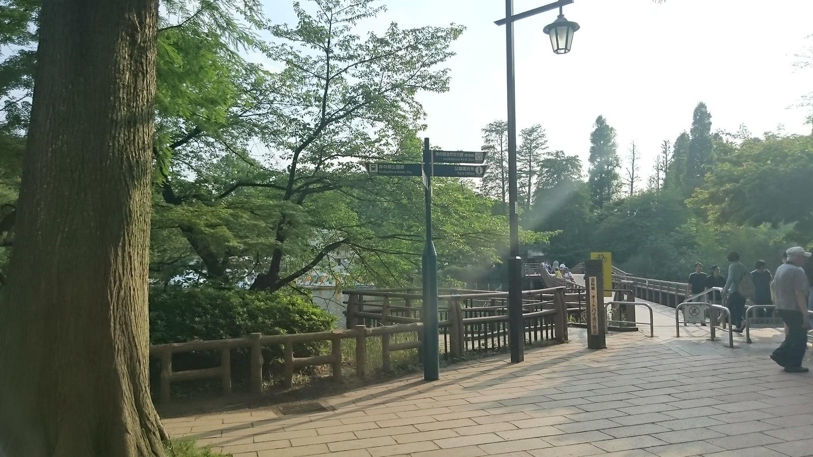 井の頭公園(DSC_0687)