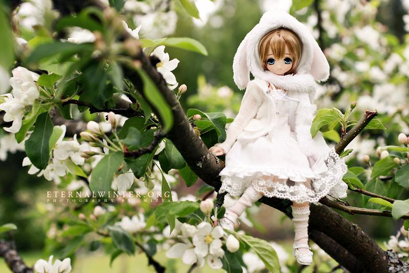 White bunny, white blossoms