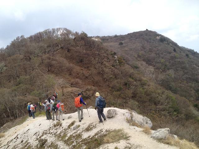 釈迦ヶ岳 県境稜線 登山道