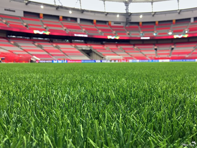 BC Place Ready for FIFA
