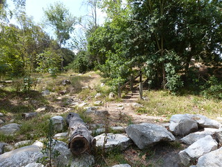 Dry pond and stairs