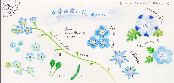 2015_05_13_blue_01_s