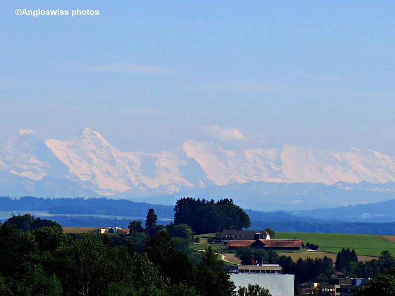 Bernese Alps from Feldbrunnen
