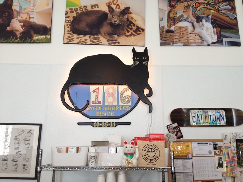 Cat Town Cafe, Oakland